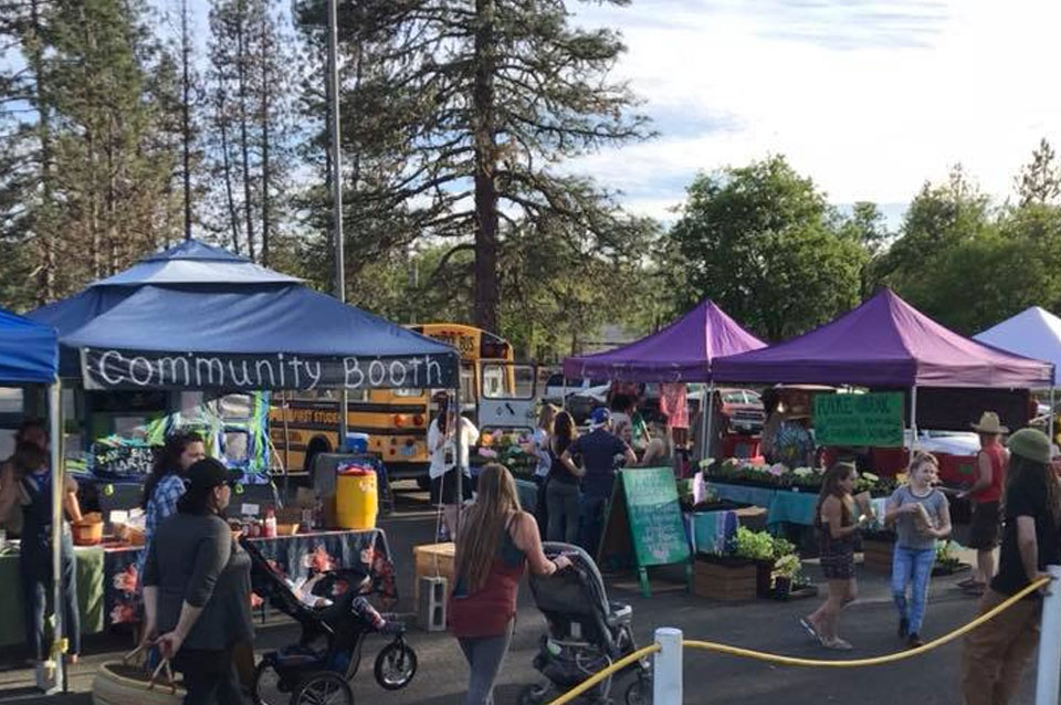Friday Farmers Market in Cave Junction